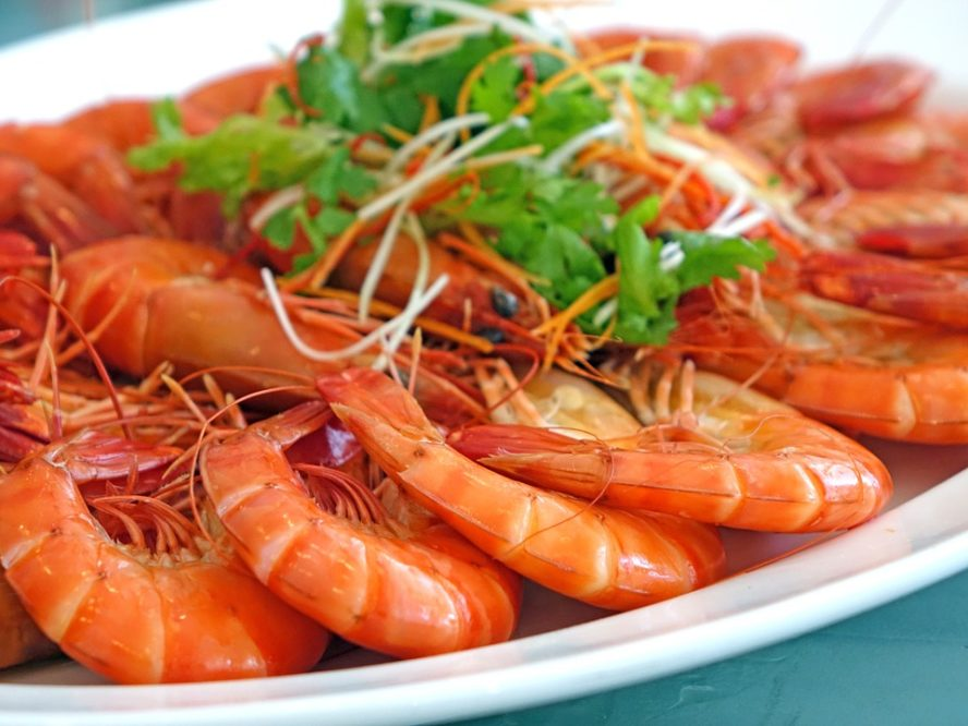Shrimps can cause acne, acne breakouts acne breakouts,foods that can cause acne, foods that cause pimples, top foods that cause acne,what food causes pimples