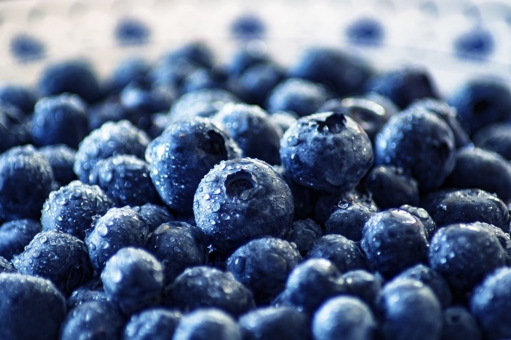 Blueberries for detoxification, how to use Blueberries for detoxification, Blueberries detoxifying food