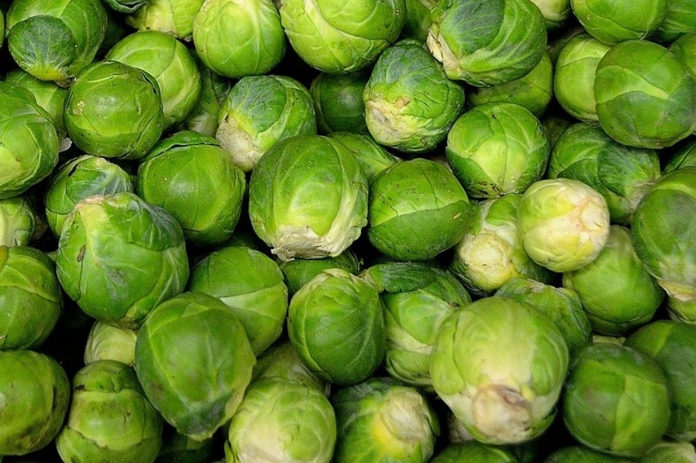 Cabbage for detoxification, how to use Cabbage for detoxification, Cabbage detoxifying food